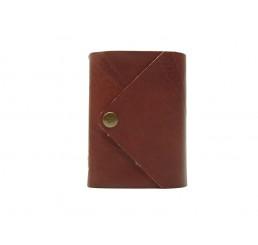Pocket Letter Lion - Lederbuch DIN A7 - 400 Seiten